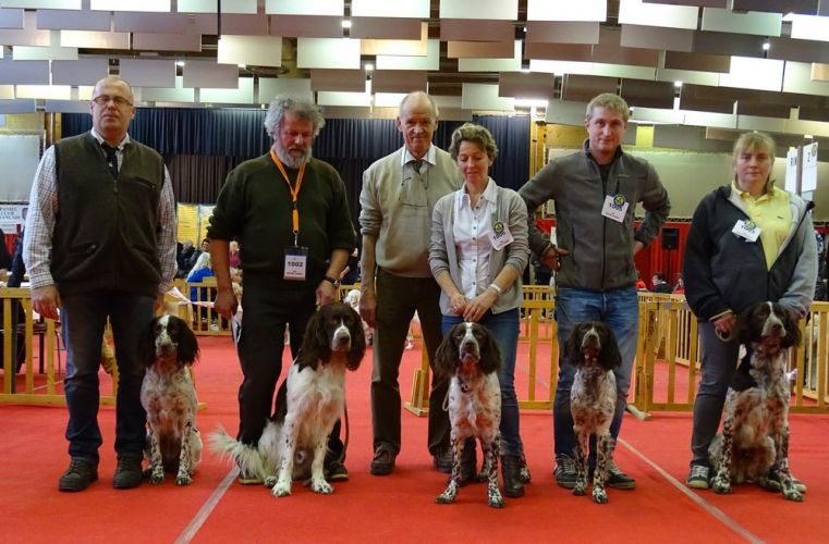 Exposition canine amiens for Amiens foire expo