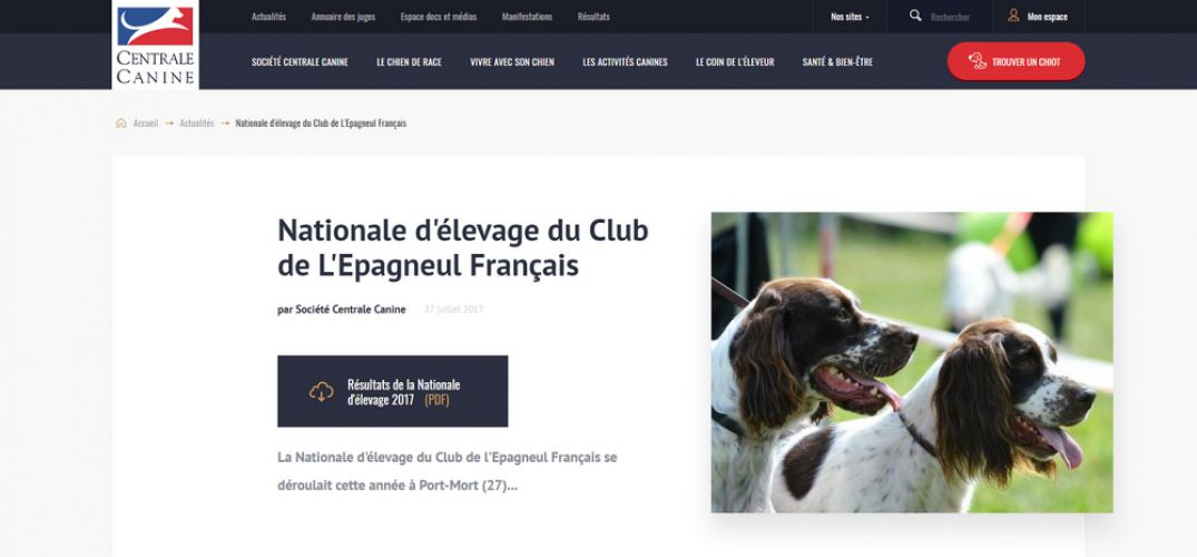 centrale canine 27