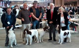 Exposition canine Internationale de Lyon (31)